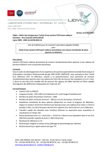 LIDYL-UMR 9222 CEA, CNRS, Université Paris