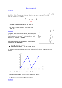 exercices dipole RL