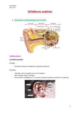 Pathologies de l`oreille