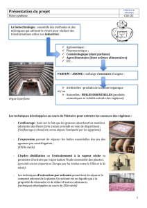 Document synthèse 1 : présentation (link is external)