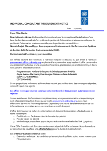Procurement Notice Consultant International SGIE