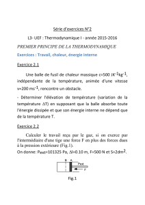 projet TD thermo I chapitre II 2015