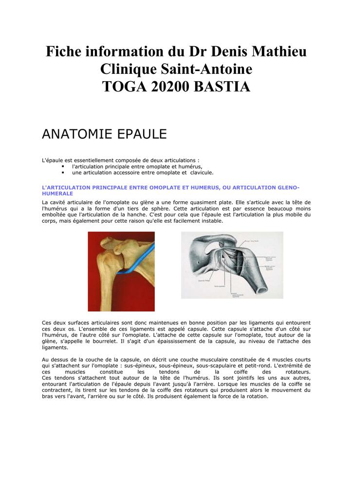 anatomie epaule - Dr Denis MATHIEU