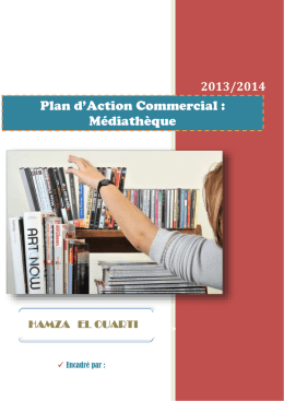 Plan d*Action Commercial