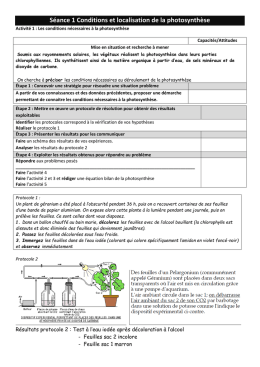 TP 1conditions et localisation photosynthese