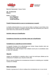 Syllabus détaillé Marketing Online-M1_NH_13-14