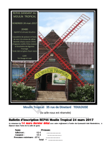 2017 repas Moulin Tropical