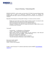 Chargé de Marketing – Webmarketing (H/F) BINDER MAGNETIC