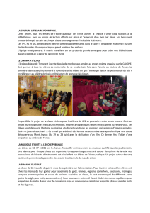 article bulletin municipal