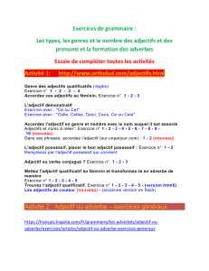 les adjectifs exercices