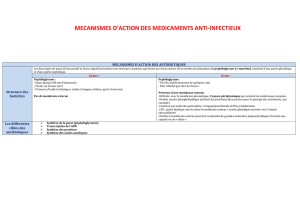 10-mecanismes-d-action-des-anti-infectieux