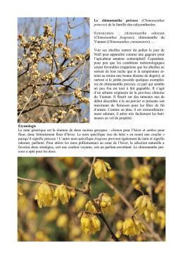 Catalogue jardinerie d embaloge for Catalogue jardinerie