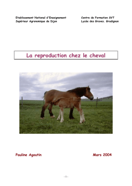 Aspect comportemental de la Reproduction chez les chevaux