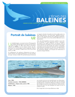 baLEinES - Alliance Éco
