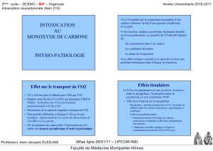 intoxication au monoxyde de carbone physio