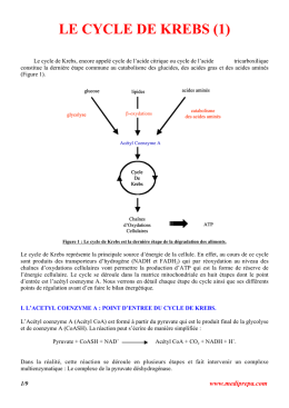 le cycle de krebs (1)