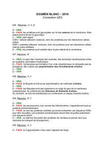 EXAMEN BLANC – 2016 Correction UE2