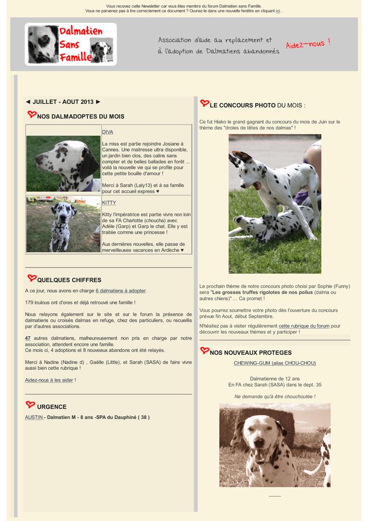 Nos Nouveaux Proteges Dalmatien Sans Famille