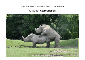 13_reproduction_grpD2_12