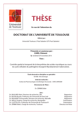 THµSE - Université Paul Sabatier