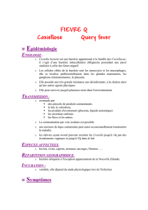 FIEVRE Q Coxiellose Query fever