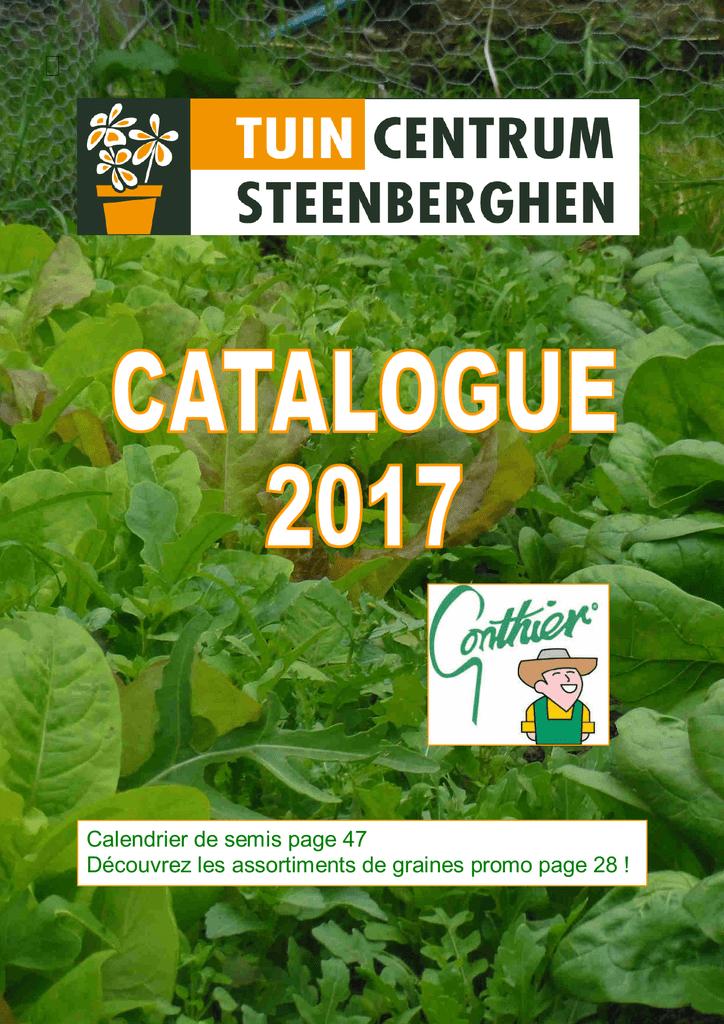 JER 150 Graines de Cactus sain et d/élicieux Grains de Fleurs Sauvages Produits pour Maison//Jardin