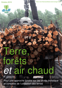 un nouveau document - Global Forest Coalition