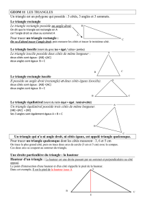 3 côtés, 3 angles et 3 sommets. Le triangle rectangle Le tria