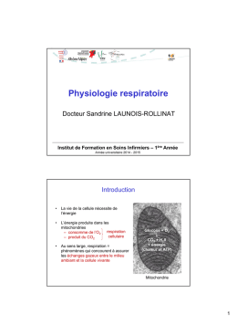 Physiologie respiratoire - Formation en Soins Infirmiers