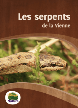 livret-serpents-web - site d`établissement