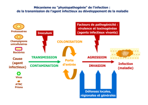 Mécanisme ou physiopathogénie de l`infection