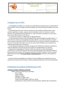A-Rappels sur le CMV : B-Situations de suspicion d`infection par CMV