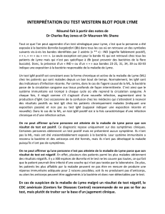 INTERPRÉTATION DU TEST WESTERN BLOT POUR LYME