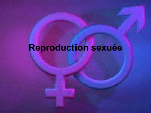 La reproduction - 9 La reproduction sexuée