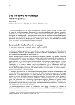 Les insectes xylophages