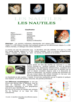 Classification Règne : Animalia Embranchement : Mollusca Classe