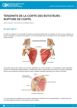 TENDINITE DE LA COIFFE DES ROTATEURS – RUPTURE DE