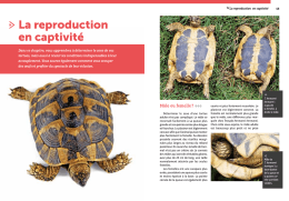 La reproduction en captivité