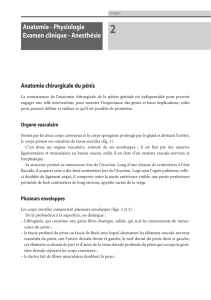 Anatomie - Physiologie Examen clinique