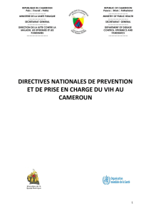 directives nationales de prevention et de prise en charge du vih au