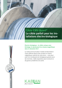 Flyer câble EMV