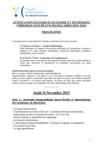 attestation chirurgie bucco-maxillaires