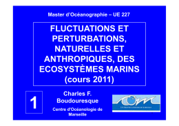 FLUCTUATIONS ET PERTURBATIONS, NATURELLES ET