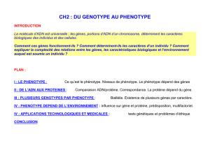 KeepSchool > Fiches de Cours > Lycée > SVT / Biologie > Génotype et phénotype