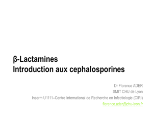 β-Lactamines Introduction aux cephalosporines