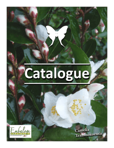 Catalogue - Jardinerie d`Embaloge