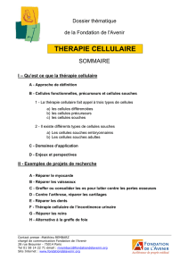 therapie cellulaire - Institut Clinident