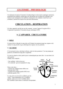 anatomie – physiologie circulation – respiration