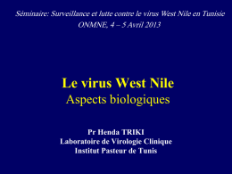 Diagnostic Assays for the Detection of West Nile Virus Infection