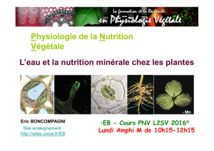 Cours 1-2 PNV